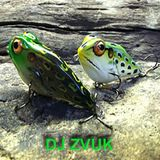 Dj Zvuk - Spring the Bass