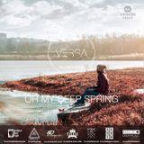 Oh My Deep Spring Mix