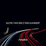 SLCTR / MIX 005 // 3:00 A.M.BIENT