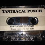 Tantracal Punch - David Picone (Atomic Music - mid 90s breaks and prog)