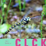 CLCK Podcast 138 - Sunny_x