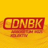 ARBORETUM KOLEKTIV / DNBKonferencija #005 / Mix #025 / 2017