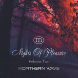 Northern Wave - Nights Of Pleasure. Volume Two (February 2019)