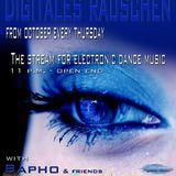01.11.2012 - digitales rauschen - Purgatory - Hamburg