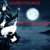 SOUND FELLINGS 001 With Chris-Oxygen