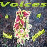 Voices (in my inside garden) 2018