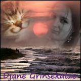 DJane Grinsekatze - Minimales Sternengeschnupper mit blauem Licht