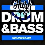 Logo - The Decompression Sessions live on Hush FM - Dark & Neuro DNB - May 16th 2017