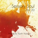 Sensory Soul Vol 20 - 3 Hour special - Soulful House Music Mixed by Keith Harmer