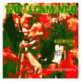 WOUJ CAMINHO - Riddim-Shan Vol.1 (Countryman Chronicle)