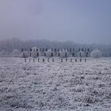 TerraHertz - Silence Speaks (DI Winter Solstice 2016)