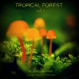Tropical Forest Vol.1 Compiled by Beyond Universe (Lysergic Sounds Of Dream)