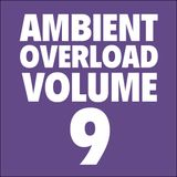 Ambient Overload Vol. 9