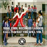 Soul Cool Records/ Adder - Call It What You Will Vol 1