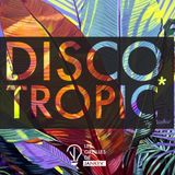 Discotropic mix by Jankev (June 18 - mix #22)