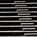 Timmy Mendeljejev - To Do More Often 4