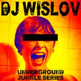 DJ WISLOV SERIES (UNDERGROUND JUNGLE NIGHT)
