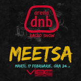 Arena dnb radio show - vibe fm - mixed by MEETSA - February 17th 2015