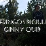 Neringos bičiulis: Ginny Quid 2017.01.04