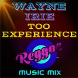 TOO EXPERIENCE WAYNE IRIE REGGAE MUSIC MIX