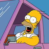 Episode 18: Homer Hit My Car!