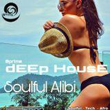 Soulful Alibi - DeepSoulfulTechAfroHouse Mix