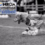 La Inercia recomienda... (04) el fútbol
