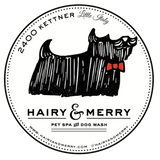 Hairy & Merry Podcast #2 - Pet Portrait Stories with Allison Shamrell