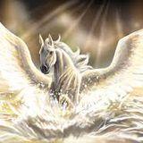 Pegasus At The Beach