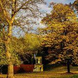 """""""BRANKOVI DANI U VUKOVARU"""" - EMISIJA 5 - 13.10.2014. 13:15h"""