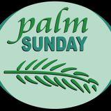 2020-04-05 Palmzondag door Lieve Steenbergs