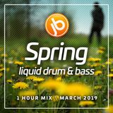 Johnny B Spring Liquid Drum & Bass Mix - March 2019