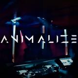 Animalized Live Set @ South 03.08.18