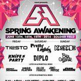 Steve Aoki live @ Spring Awakening Music Festival 2014 (Soldier Field, Chicago, USA) - 15.06.2014