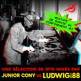 Mixtape confinement #3 : Junior Cony (BxN / Ludwig Von 88)