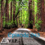 T&T – Tunes Of The Life [Episode 043] [V.I.P. Session]