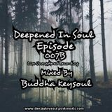 The Deepened In Soul Episode 007B Mixed By Buddha Keysoul