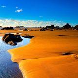 The Dry Beach