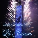 DJ Lil Shawn Party Boy 2017 - 2018 YEAR MIX! ! ! ! (Live sets by CDJ)