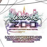 Dillon Francis - Live at Electric Zoo NYC - 31.08.2012