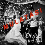 Mulatós party mix by Divius