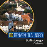 Benvenuti al Nord - Spilimbergo (PN)