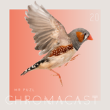 Chromacast 20 - MR PUZL