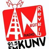 The Neon Reverb Radio #5-10 Jan. 12th, 2014
