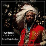 Thundercat - I wish i had nine lives (Mixtape)