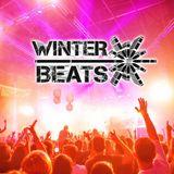 FORMAT B live auf WINTER BEATS 2014, Saturn Arena, Ingolstadt
