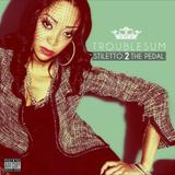 Artist Spotlight - TroubleSum Pt. 2