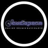 Friday night skank LIVE @www.audiopornfm.co.uk 03/04/116