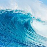 Naka Waves Vol.23