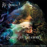 Pete Ardron - Unexpected Pleasures (album taster mix)